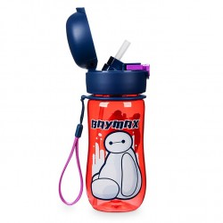 Disney Baymax Flip Top Water Bottle, Big Hero 6