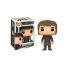 Funko Pop 52 Game Of Thrones Bran Stark