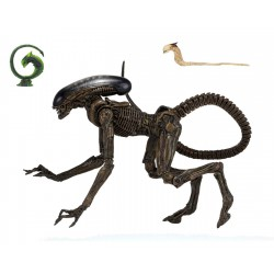 NECA Alien 3 Action Figure Ultimate Dog Alien 23 cm